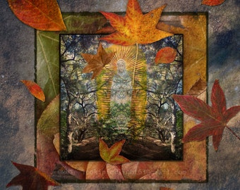 Saint Mary Woodland Art | Spiritual Art | Forest & Leaves Collage | Spiritual Vision Photo | St. Mary of the Woods | Virgin Mary Photo Art