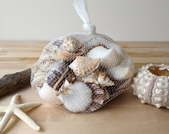 Beach Shells in net bag wedding decor home decor