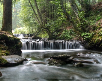 Waterfall Nature Photography, Carpathians Landscape, Wall Art, Photo Print