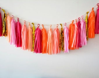 Fiesta Tassel Garland - birthday, party decoration