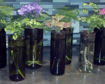 Self Watering Wine Bottle Planters