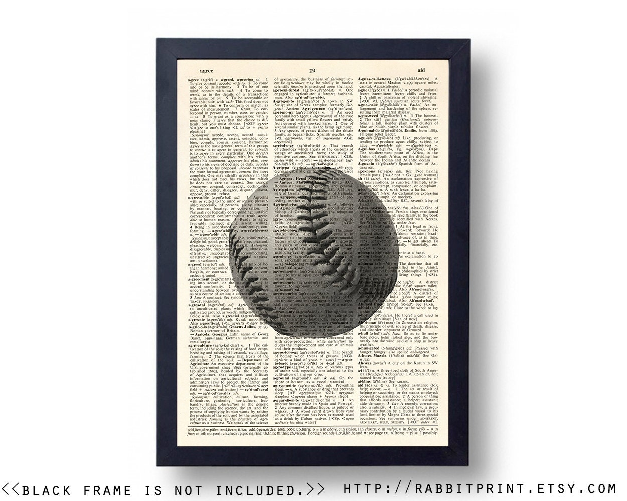 Vintage Baseball Wall Decor : Vintage baseball wall art prints decor sports by