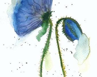 """Watercolor """"Blue poppy"""""""