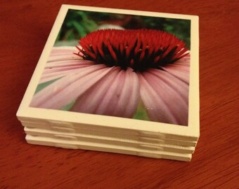 Set of 4 Handmade Tile Coasters: Purple Cone Flowers