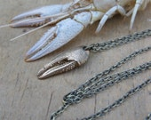 crayfish crawfish CLAW bronze seafood lover necklace