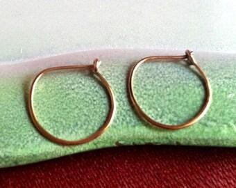 Sweet and Simple Mini 14k Gold filled hoop earrings