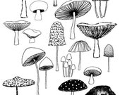 Mushrooms, limited edition giclee print