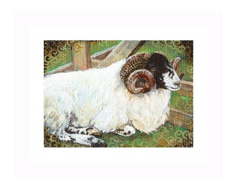 Original sheep ACEO Horned Sheep painting a day 326, original ACEO painting, SFA, black and white sheep art Acrylic on Canvas, miniature art