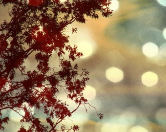 Tree, Nature, Sky, Landscape, Bokeh Nature Photography, Dark Red, Gold, Maroon, Burgundy Wall Art