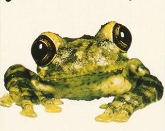 Silverchair Frog Stomp Rare Poster