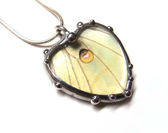 Real Luna Moth Heart Necklace