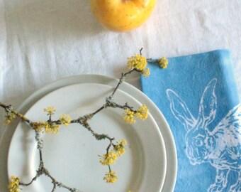 pair of sky blue rabbit napkins