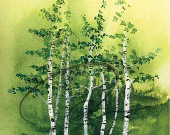 Tranquil Grove - Watercolor Art Print Birch Trees Green Forest Aspen Woods Landscape Painting Available in Paper and Canvas by Olga Cuttell