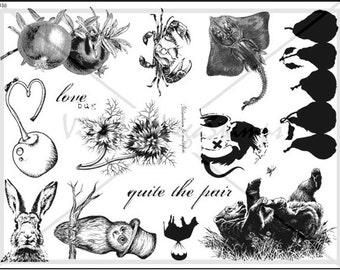 unmounted rubber stamp plate  animals owl rabbit birds quotes flowers border  no. 1438
