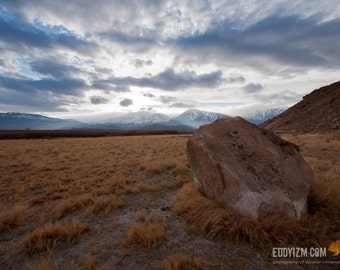 The Happy Field - Bishop, CA / Landscape Photography