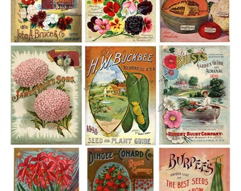 vintage seed packets, flowers, fruits and vegetables, digital printable images no. 1587