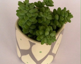 Handmade Ceramic Planter Sweet mint and grey cube planter