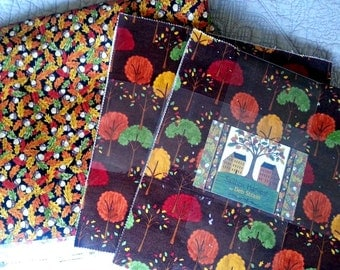 Saltbox Harvest Layer Cake and Yaradge Quilt Kit Moda