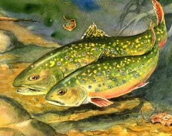 ORIGINAL Brook Trout in Love Watercolor Painting fish art Cottage Lake House Fly Fishing Decor by Barry Singer