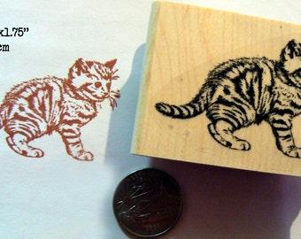 Kitten rubber stamp P53