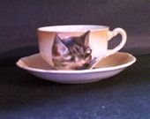 Cup and Saucer Set,Showing Cat on Cup,Rooster and Hen,on Saucer,Year 1870 to 1929,Semivitteous,Porcelain