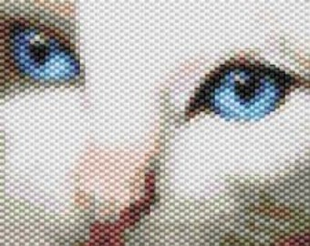 Blue Cat Eyes,  Beaded Tapestry Pattern