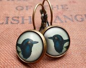 Magpie Leverback Earrings (TB08)