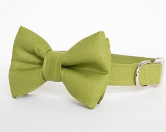 Dog Bow Tie Collar - Okra Green Gentleman's Collar