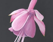 Fuchsia Flower Painting - Original Acrylic Pink Wall Art - Great Gift