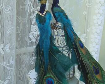 Smaller Peacock Lovebird Pair