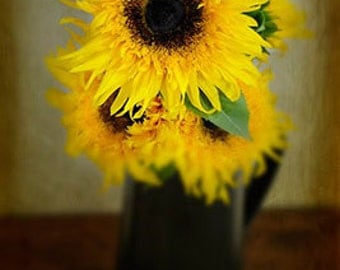 Vase of Sun - Signed, Matted and Mounted 5x7 Fine Art Photograph