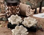 Sweet Magnolia Glycerin Soap