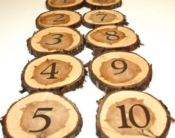 Set of 10 Table Numbers, wood slice, cedar tree slice, ready to ship, reclaimed salvaged tree, rustic woodland outdoor wedding party event