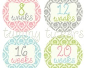 Sale Pregnancy Announcement Baby Belly Bump Stickers Set of 12 Damask Blue Pink Green Grey Baby Shower Gift Belly Growth Maternity Bump
