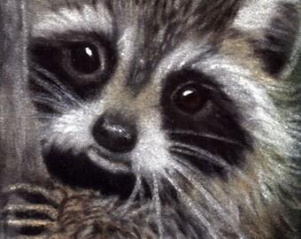 Friends? - raccoon, raccoon art, raccoon print, raccoon lovers, raccoon gift, wildlife art, raccoon card, animals,