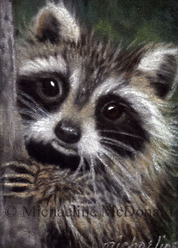 Raccoon Painting Art - raccoon painting, raccoon art, raccoon print, raccoon lovers, raccoon gift, wildlife art,