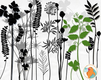 Tall Foliage Clip Art, Long Stem Flowers & Leaf Silhouettes, Botanical Herbs Digital Stamps, Plant Graphics PNG + Photoshop Brush