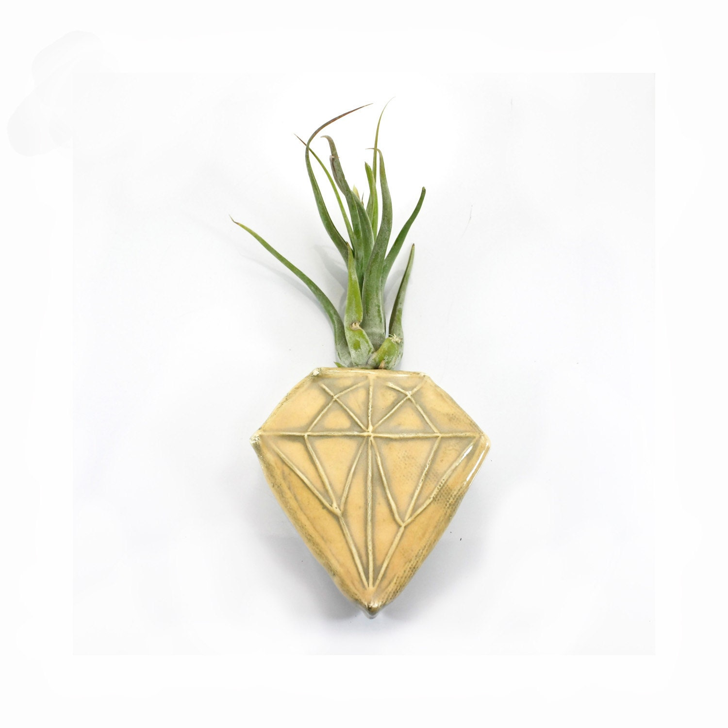 Gold Diamond Magnetic Bud Vase Wall Pocket Holds Water