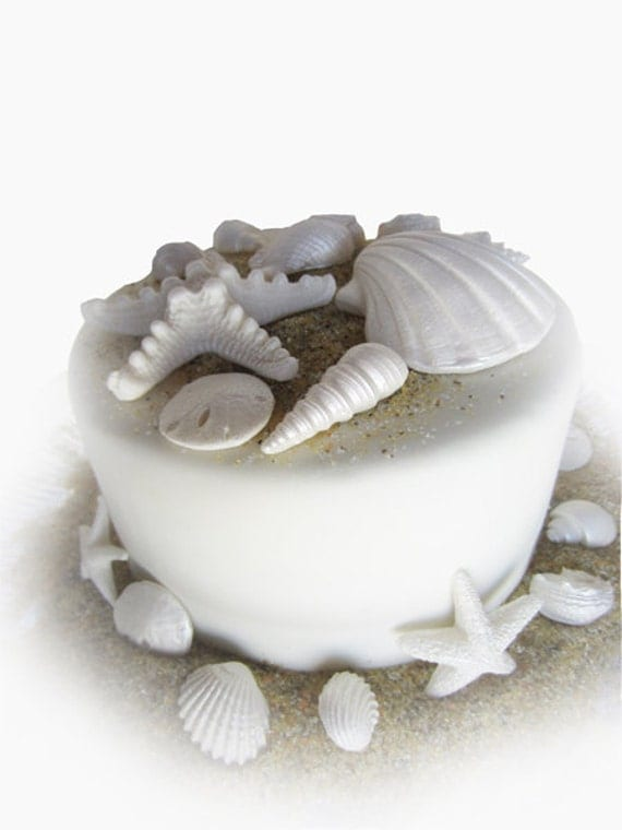 edible sea shells with sand set of 18 pearl white