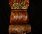 Sixties Redwood OWL Retro Groovy Wall Decor
