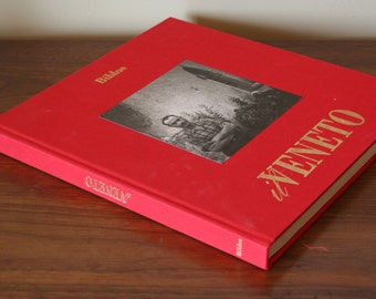 Italian Coffee Table Book - il Veneto - Giuseppe Bruno - Photographs - Foreign Language Text - Venice Italy