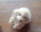 Knitted curly apricot Poodle