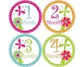 Baby Stickers Monthly, Girls Baby Bodysuit Stickers, Monthly Stickers, Baby Month Stickers, Monthly Bodysuit Stickers, Flowers (G090)