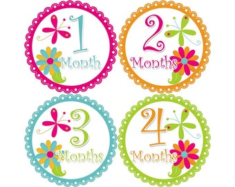 Monthly Stickers, Girls Photo Props, Monthly Baby Stickers, Monthly Baby Photos, Baby Gift, Milestone Stickers, Flowers (G090)