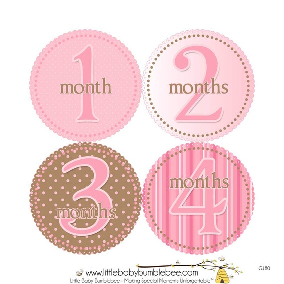 Baby Month Stickers, Monthly Baby Stickers, Monthly Photo Stickers, Girls First Year Photo Props, Baby Shower Gift, Pink and Brown (G180)