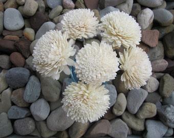 Sola Zinnia Flowers - set of 12 - stemmed