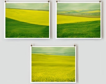 The Fields in Spring set of 3 photos, save 15%, nature photography, landscape art print, rustic wall decor, 10x8