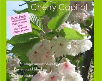 Magazine Bag Duct Tape ANA DELIGHT Cherry Capital Green