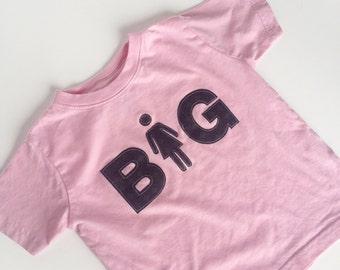 Big Sister Shirt, Little Sister Shirt, Pink Shirt, Sibling Shirt