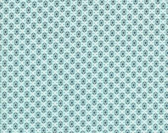 Homebody Boxers in Aqua, Kim Kight, Cotton+Steel, RJR Fabrics, 100% Cotton Fabric, 3006-001